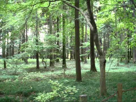Hiroyuki Oda 【Thirty】 (original mix) Full Ver.