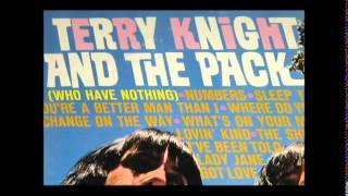 Terry Knight and The Pack - A Change on The Way