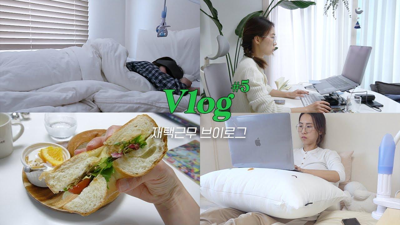 코로나가 불러온 재택근무 브이로그 (feat. 집순이 자취생 짬바) ㅣ VLOG 폴리에세이 #5