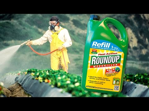 Documents Show Monsanto Colluded With EPA To Hide RoundUp's Cancer Link - The Ring Of Fire