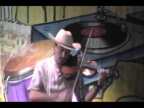SONES DE MEXICO  (Cielito Lindo Huasteco)