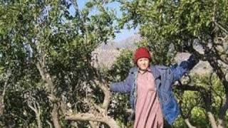 Basheera Choki Bhagat جھنگ دیاں ماڑیاں وچ پکھوآں دے