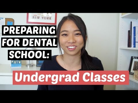 Undergrad Majors and Classes to Prepare for Dental School || Brittany Goes to Dental School