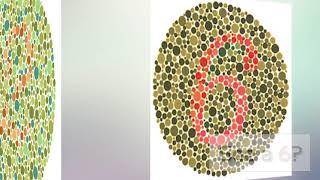 46 Are You Color Blind Test