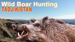 Wild Boar Hunting in Tadjikistan / 2019