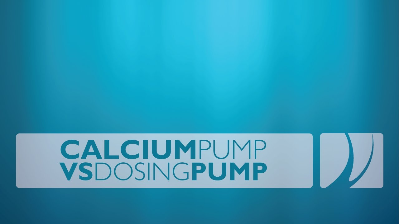 Calcium Pumps Nature Com