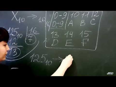Как переводить двоичный код в шестнадцатиричный
