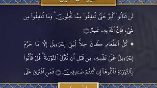 Recitation of the Holy Quran, Part 4