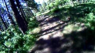 Wyatt West Ranch Montesa Honda Cota 4rt Trials Labrador Retriever Log Home Durango Colorado