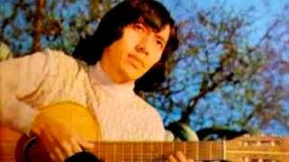 Daniel Toro - Mi mariposa triste (la mejor version)