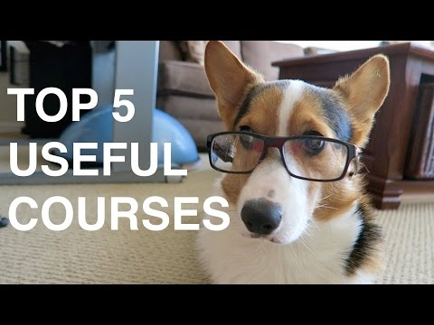 TOP 5 USEFUL COLLEGE COURSES - Life After College: Ep. 420