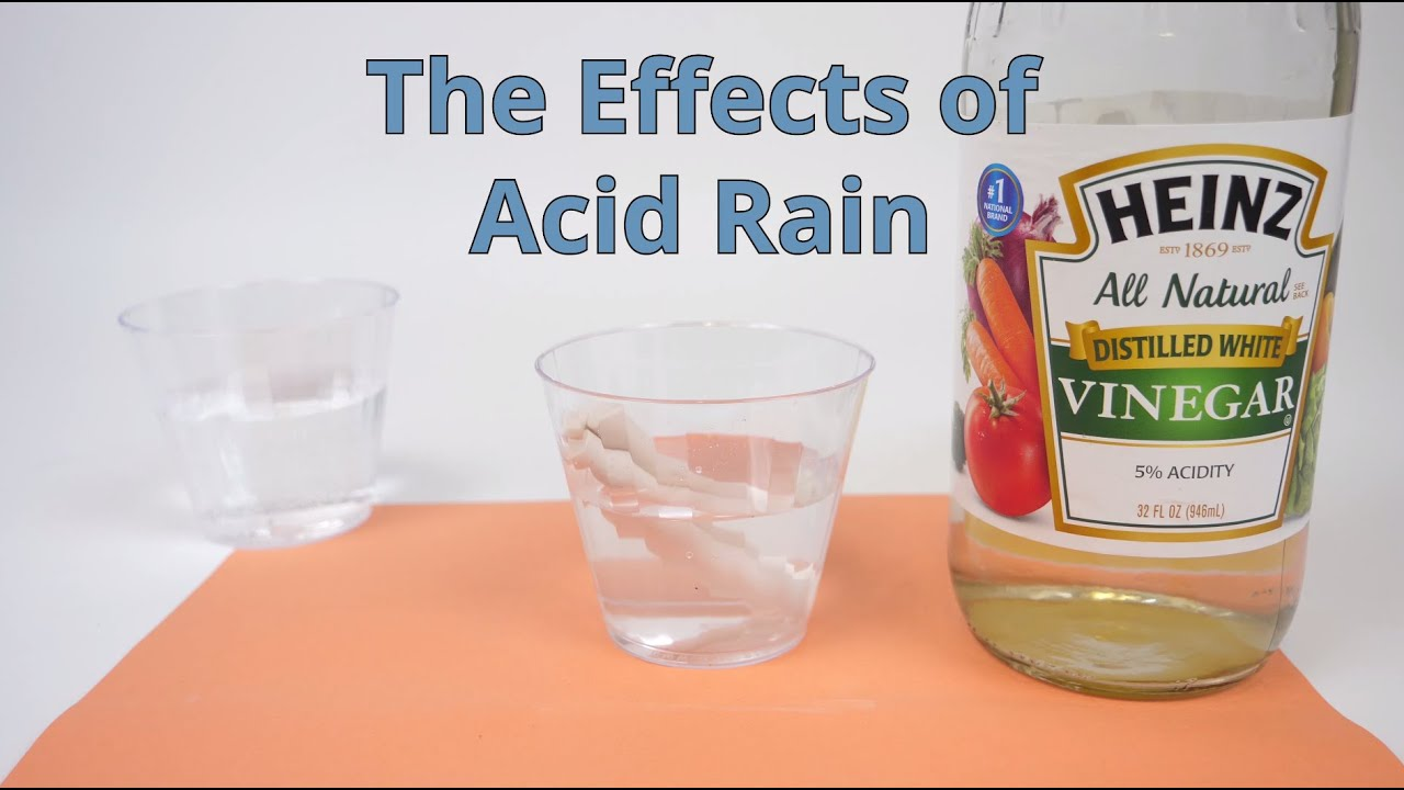 acid rain water cycle diagram [ 1280 x 720 Pixel ]