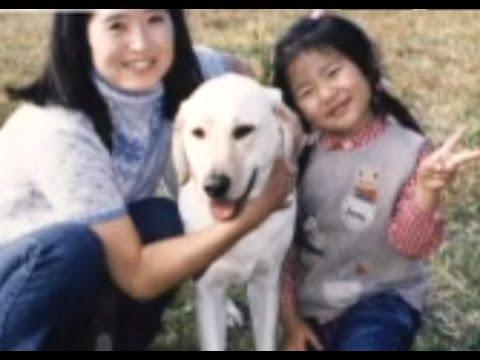 とある盲導犬の引退 ~出会い、そして涙の別れ~