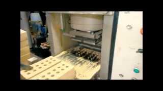 видео Оборудование для производства облицовочного кирпича