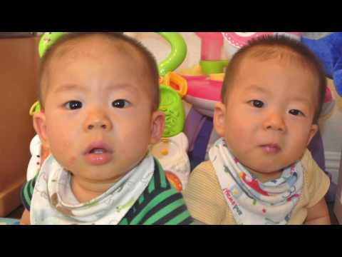 Noah & Joshua Pak's Dol Slideshow
