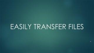 Transfer Files between Mac and Windows