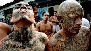 7 Geng Penjara Paling Berbahaya yang Ditakuti oleh Polisi di Dunia