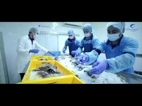 The Deep Sea Food Company | Seafood Industry