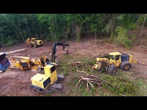 Hill Logging 2017