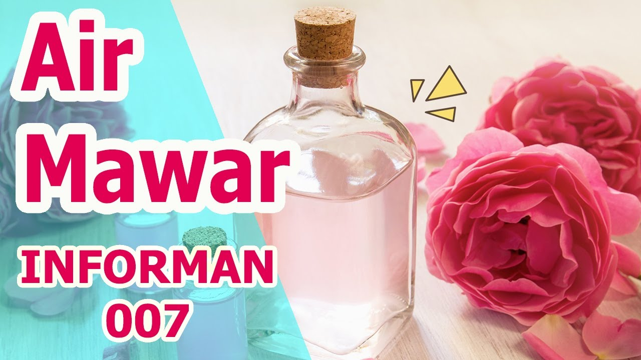 Manfaat dan Kegunaan Air Mawar Untuk Wajah dan Kecantikan, WAJIB TAU !!! - YouTube
