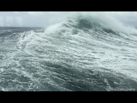 Extreme landing on CAPE HORN by Zodiac boat!
