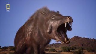 Фантастические фильмы животные хищники Адский Кабан смотреть онлайн на русском Nat Geo Wild  2017 HD