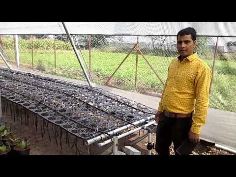 How to save Water with effective technology . Plant Nursery in Jaipur - Neel Kamal Nursery, Jaipur