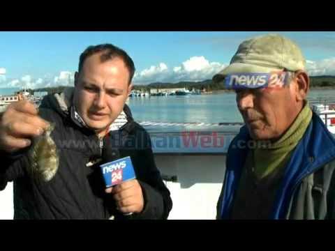 """Vlorë, peshkatarët kapin një """"gjarpër deti""""?!"""