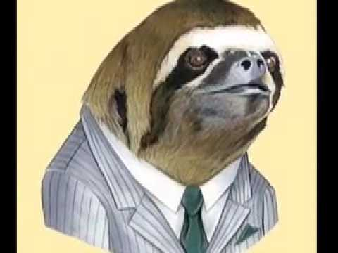 SLOTH SONG - YouTube
