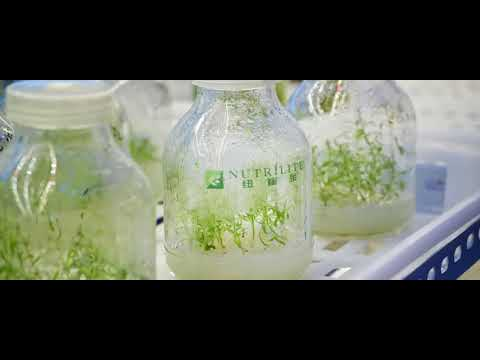 Amway Botanical Research Center delves into phytonutrient sc