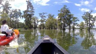 Lake Martin with Old Town Next canoe 7-15-17