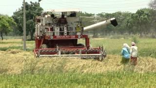 Mechanized Rice Harvesting in Chhattisgarh, India. Part-190 © Pankaj Oudhia