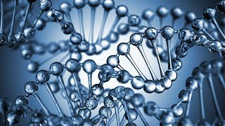The first human trial using CRISPR cas 9 gene-editing technology is...