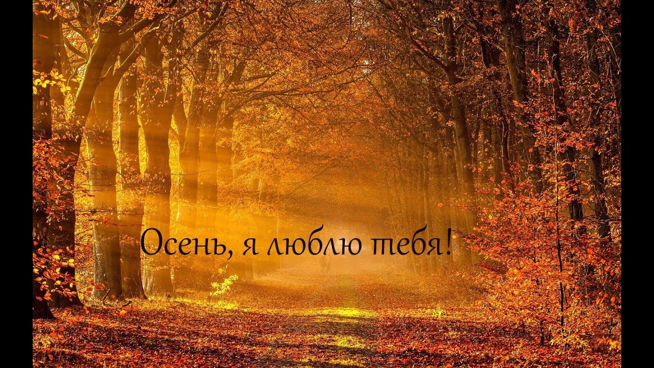 даже бабушкины картинка я люблю тебя осень и я тебя осень осень можете ознакомиться фото