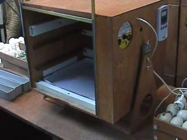 Инкубатор для яиц Поседа: