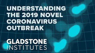 Understanding the 2019 Novel Coronavirus Outbreak