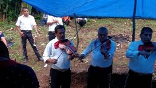 Te vas Ángel mío -Maricahi Alma mazateca Oaxaca