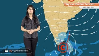 Weather Forecast for Dec 15: Delhi Pollution to continue; fog in Punjab, Haryana, West UP