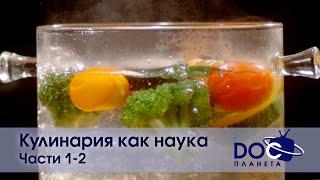 Кулинария как наука Части 1 2 Документальный фильм Сборник