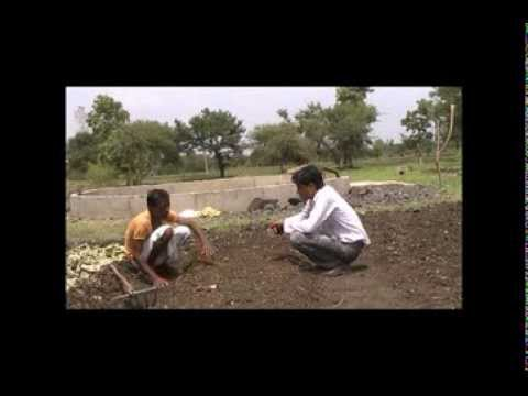 Preparation of chilli nursery bed Hindi Access Madhyapradesh