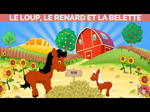 Le Monde d&39;Hugo - Le loup le renard et la belette