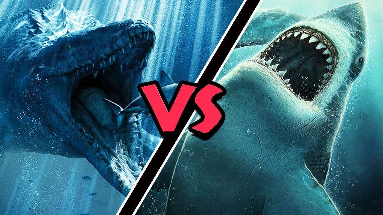 Download Mosasaurus VS Megalodon – (Who Would Win?)