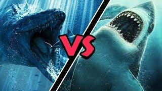 Mosasaurus VS Megalodon – (Who Would Win?)