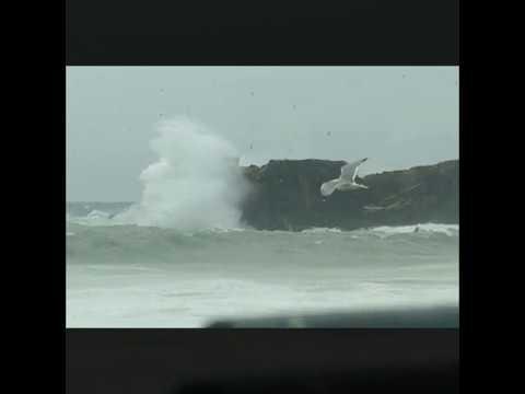 El vendaval cierra los puertos de Algeciras y Tarifa