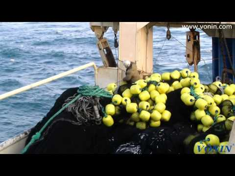 m/v Jupiter purse seining for Caplin