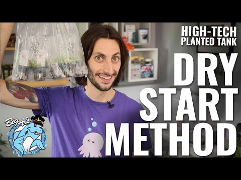 How To Use the Dry Start Method •High-Tech Planted Tank Ep 07 | BigAlsPets.com
