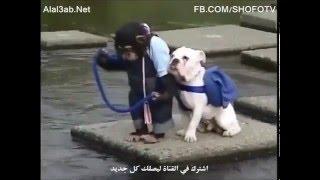 Приключения Обезьяны с Собакой часть №2/Опасный переход через речку.