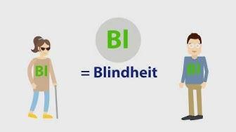 VdK-TV: Nachteilsausgleiche für Menschen mit Behinderungen (Teil 4): Merkzeichen Bl, Gl und H (UT)
