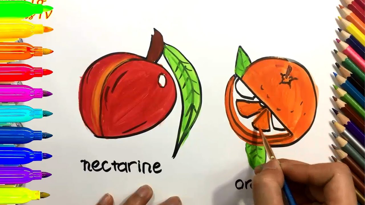 how to draw and color nectarine orange coloring pages for kids learn colors