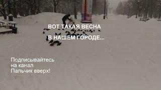 Gambar cover ВЕСЕННЯЯ МЕТЕЛЬ//НАС ЗАВАЛИЛО СНЕГОМ//СТАРЫЙ ОСКОЛ